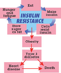 Controlling Insulin – The Best Way to Guard Your Health and Lose Weight