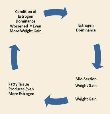 Estrace Cream Weight Gain